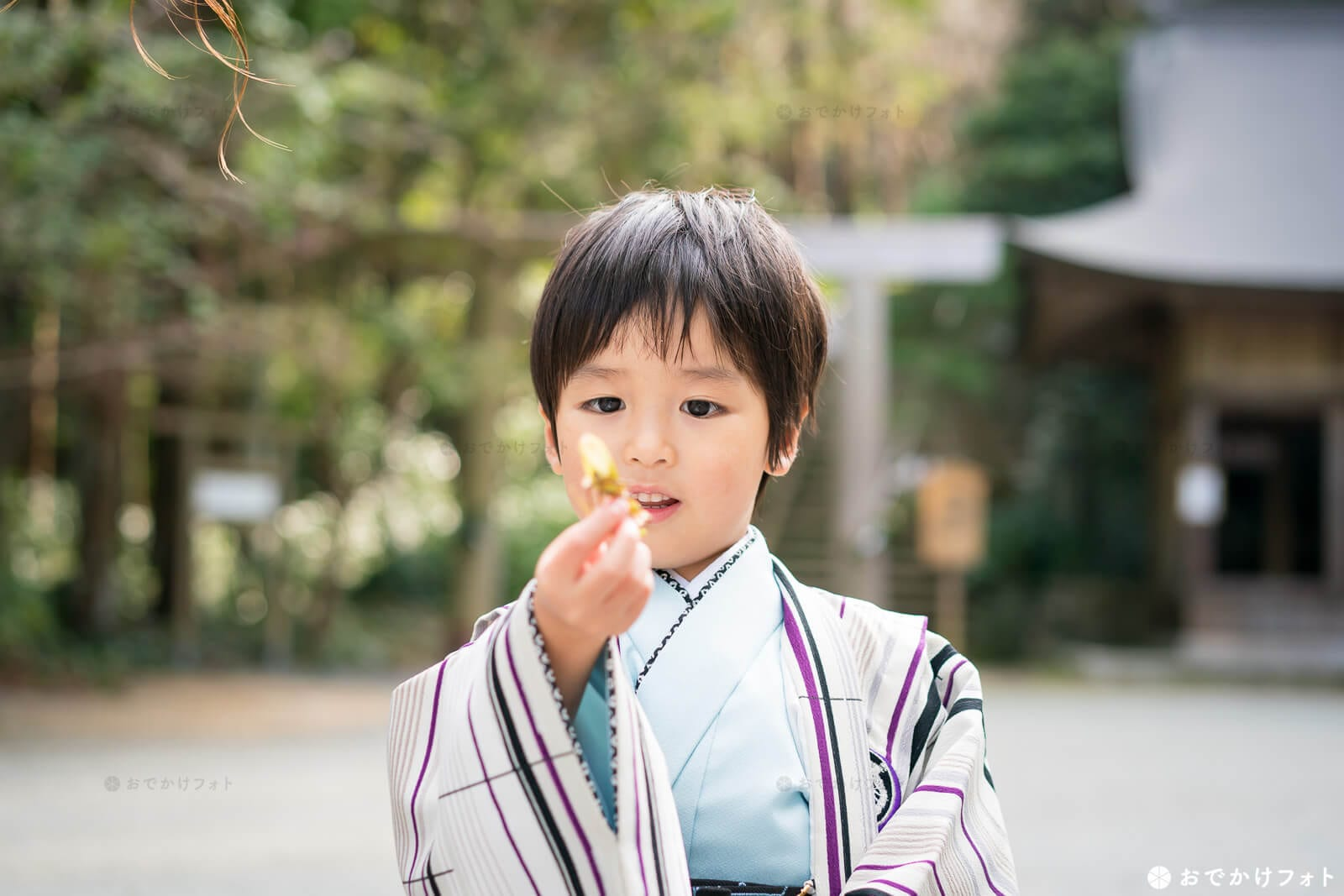 桜井神社で七五三
