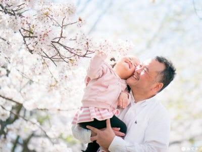 駕与丁公園・桜と家族写真