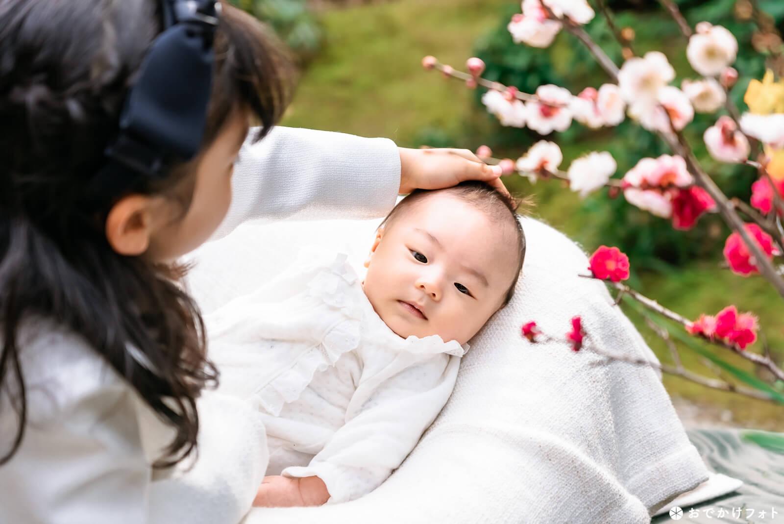 飯盛神社でお宮参りの出張撮影